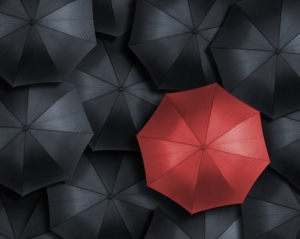 High angle view of red umbrella over many black ones